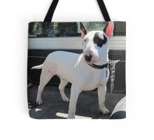 pure bred english bull terrier Tote Bag