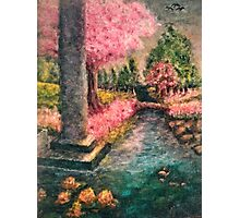 Cherry Tree and Tranquil Waters Photographic Print