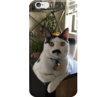 Mustache Cat on Stereo  iPhone Case/Skin