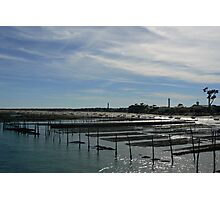 Oyster Beds, Cap Ferret Photographic Print