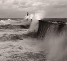 The Perfect Storm by Tom Lowe