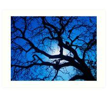 Kruger Blue Art Print