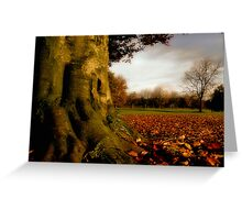 November Colours Greeting Card
