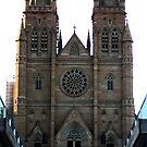 St Mary's Cathedral by Stephiee