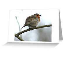 Robin singing on Box Hill Greeting Card