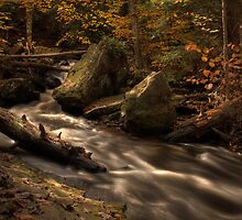 Just Above Mohawk Falls by Aaron Campbell