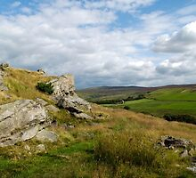 Forest of Bowland by mikebov