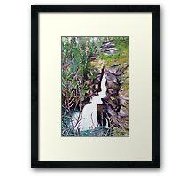 'Linville Falls' Framed Print