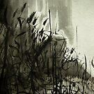 gorge forest.... by banrai