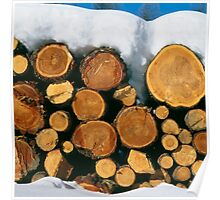 Stacked firewood Poster