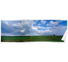 Ardennes landscape with cows Poster