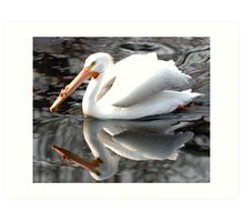 Pelican reflected in lake in St James Park Art Print