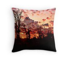 """ Woodland sunset""    (Tehidy woods.) Throw Pillow"