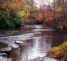 Autumn On the River by Kathy Weaver