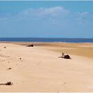 MOZAMBIQUE'S  WHITE SANDY BEACHES, AT LOW TIDE by Magriet Meintjes