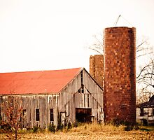 OLD BARNS by Pauline Evans