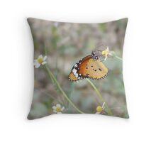 Butterfly feeding on meadow flower Throw Pillow