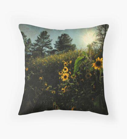 Arizona wildflowers part deux Throw Pillow