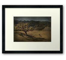 Soothing Shadows Framed Print