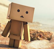 Danbo on the Beach by ElDave