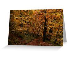 Autumn Collection - Woodland Walk 1 Greeting Card