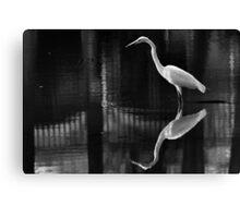 Harmony Crane Canvas Print