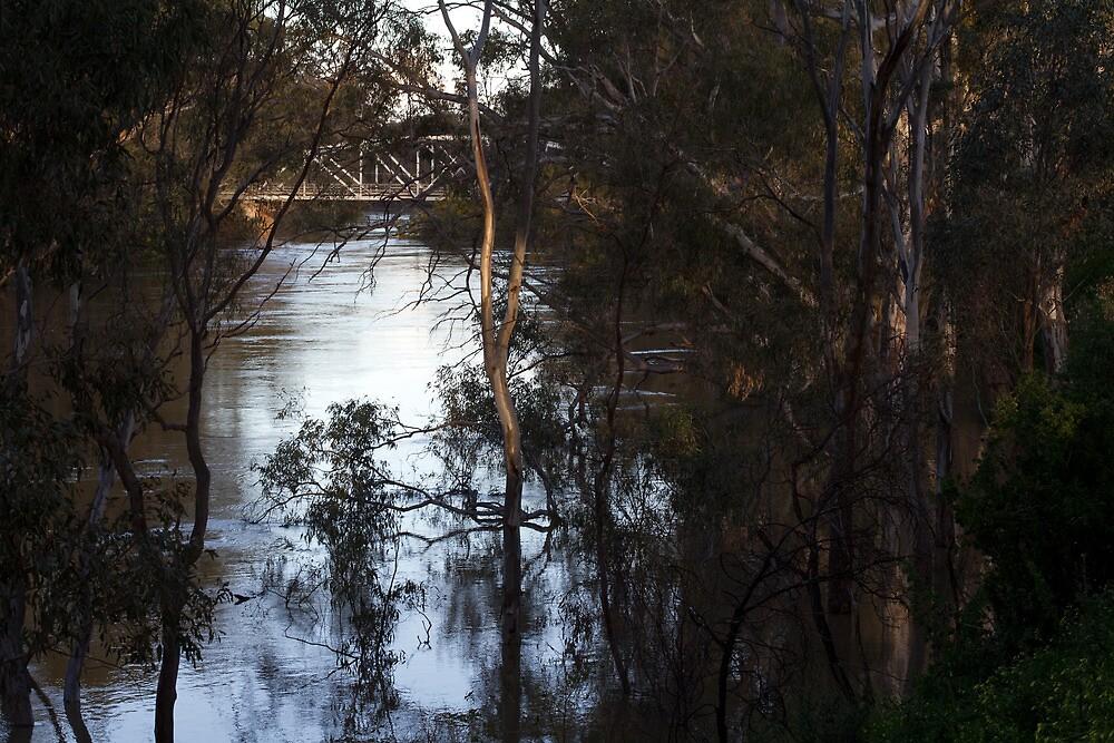 river side by Dan A'Vard