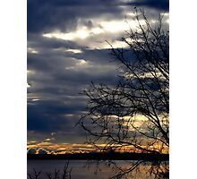 Here Comes the Sun - Silhouette of a Tree Photographic Print