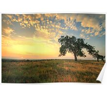Warming Lands - Sunset on the Prairie Poster