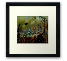 Web sight Framed Print