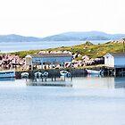 Safe Harbor by Leslie van de Ligt