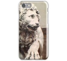Set In Stone  iPhone Case/Skin