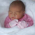 Our Second Beautiful Grandaughter by Ann Persse