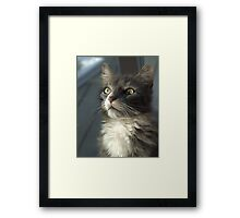 Moment of reflection Framed Print