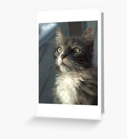 Moment of reflection Greeting Card