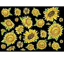 Sunflowers Black Photographic Print