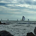 Afternoon Sail by Barry Doherty