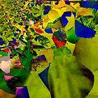 Leaves by Josie Duff