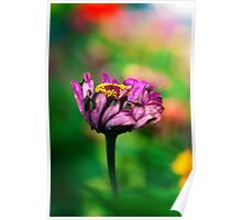 A pink flower overcome with emotion Poster