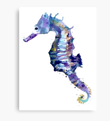 Watercolor Seahorse Canvas Print
