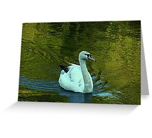 Gliding on a summer afternoon Greeting Card