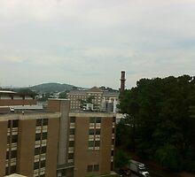 UVA Campus #2 by interstellarsky