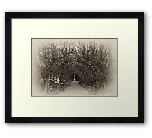 There Are Faeries at the Bottom of My Garden Framed Print