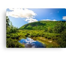 Acadia National Park Canvas Print
