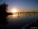 Lake Fork Sunset by Marcia Rubin