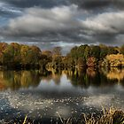 Autumn at the lake  by larry flewers