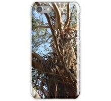 Peeling bark from top of Tasmanian Blue Gum! iPhone Case/Skin