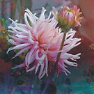 Abstract Chrysanthemum II by Indelibly-Yours