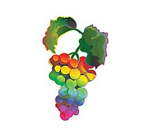 Grapes Rainbow Style Photographic Print
