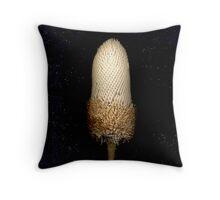 Banksia menziesii (Firewood banksia), flower scan. Throw Pillow
